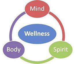 mind spirit body graphic