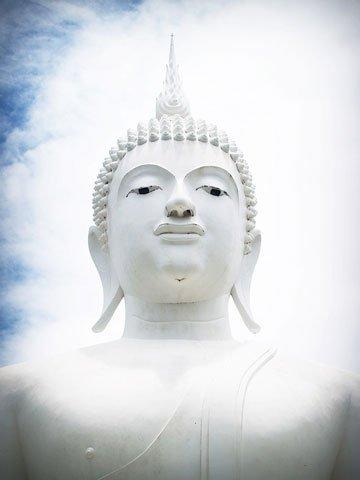 temple drug rehab thailand